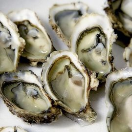 Ban Oyster Harvest to build up population