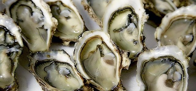 Oysters revisited