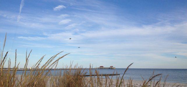 Landmark Settlement Helps the Coast