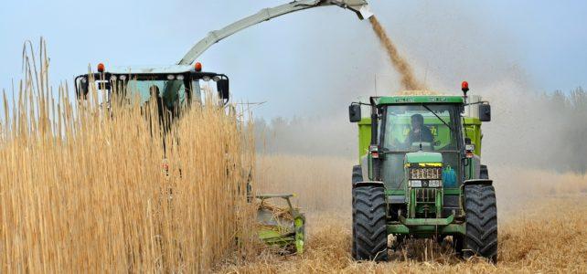 Source of Bio-Fuel