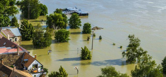 Flooded land