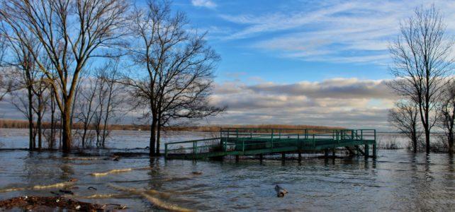Flooded Mississippi