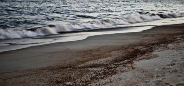 Spill on beach